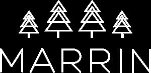 logo dark scheme